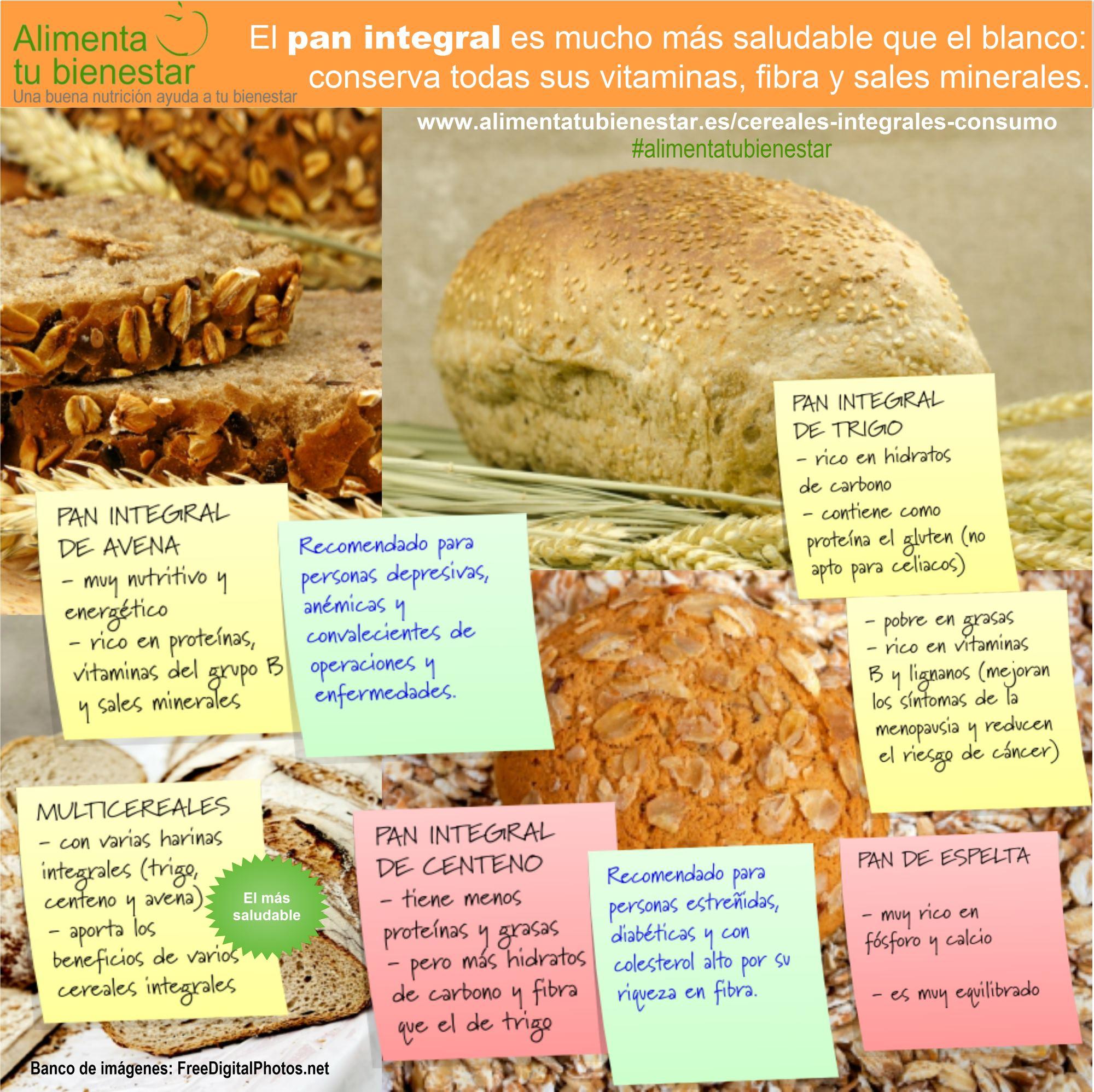Infografia Panes elaborados con cereales integrales