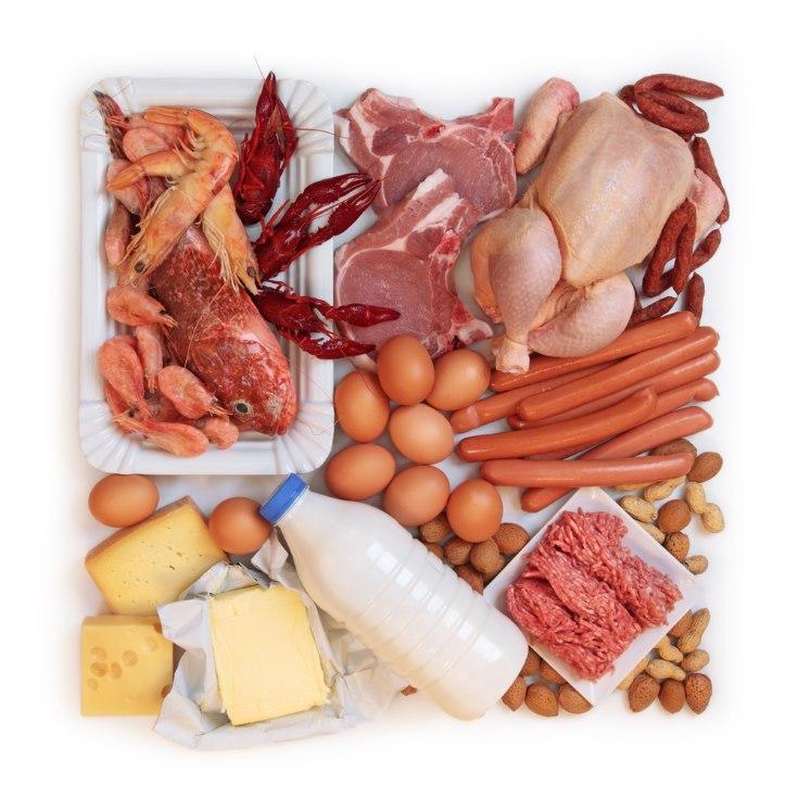 La importancia de las prote nas en la alimentaci n for Importancia de los viveros forestales