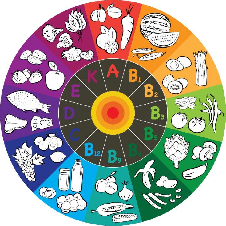 La importancia de las vitaminas en la alimentaci n for Importancia de los viveros forestales