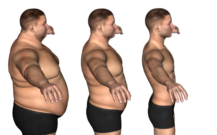 Adelgazar a 8 kg en un mes el foro