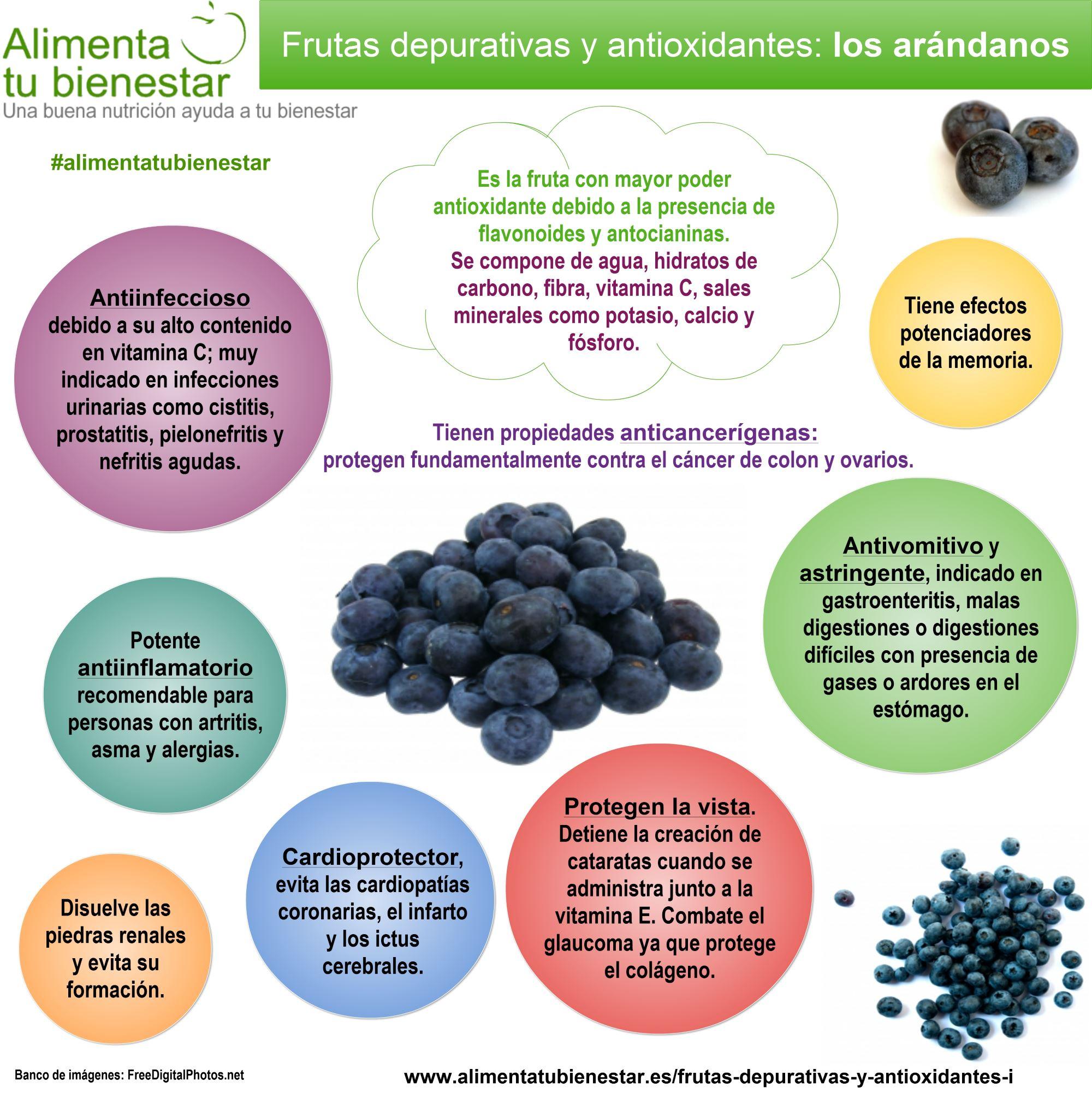 Infografía Frutas depurativas y antioxidantes Los Arándanos