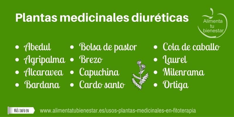 Plantas medicinales diuréticas