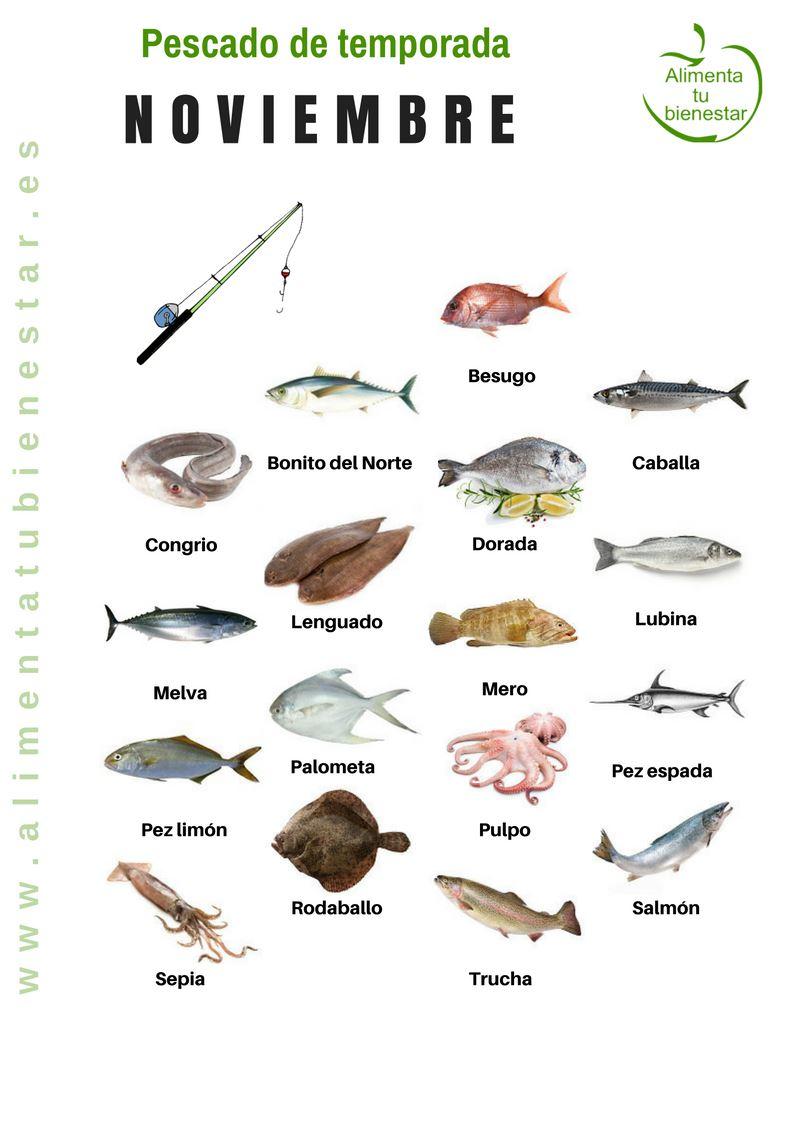 Pescado de temporada en noviembre