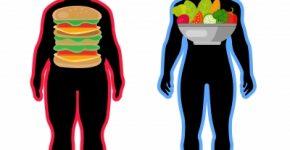para perder peso come bien